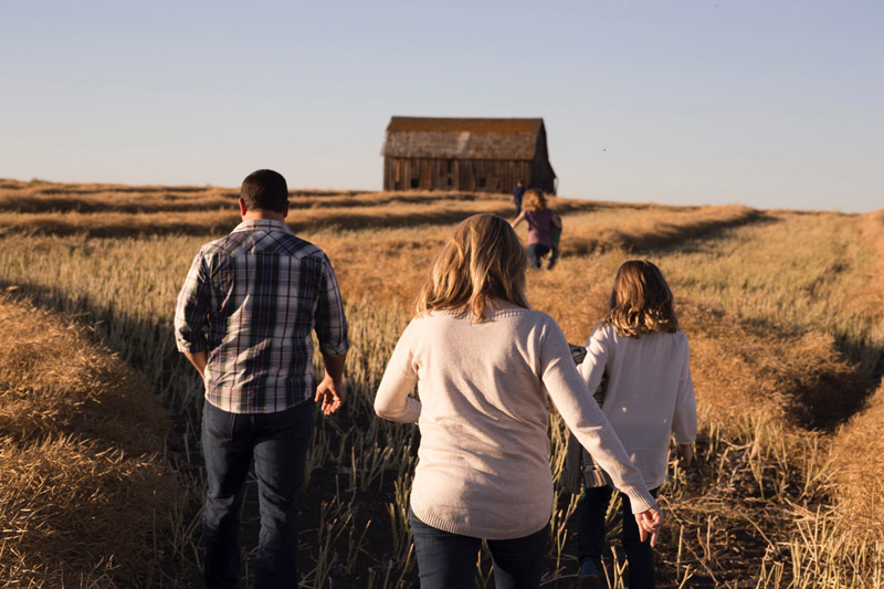 A family walking through tall grass towards a barn